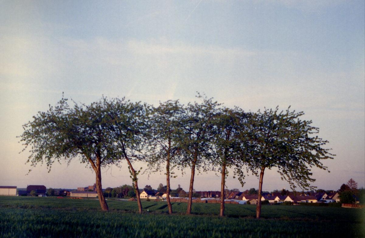 Kirchbaumgruppe